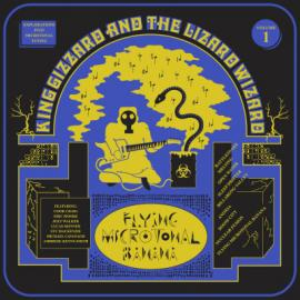 Flying Microtonal Banana (Explorations Into Microtonal Tuning Volume 1) - King Gizzard And The Lizard Wizard
