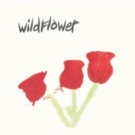 Better Times - Wildflower