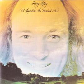 A Rainbow In Curved Air - Terry Riley