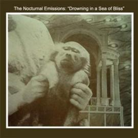 DROWNING IN A SEA OF BLISS (RSD 2020) - NOCTURNAL EMISSIONS