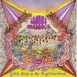 Little Bird In The Neighborhood - James Maddock