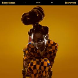 SOMETIMES I MIGHT BE INTROVERT-LITTLE SIMZ - Little Simz