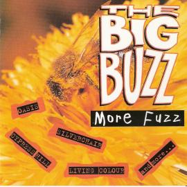 The Big Buzz: More Fuzz - Various