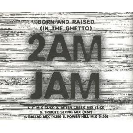 Born And Raised (In The Ghetto) - 2am Jam