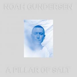 PILLAR OF SALT-GUNDERSEN,NOAH -