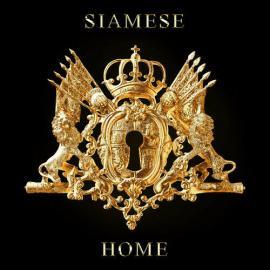 HOME - SIAMESE