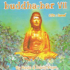 Buddha-Bar VII - Ravin