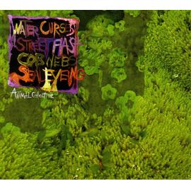 Water Curses - Animal Collective