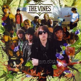 Melodia - The Vines