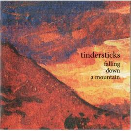 Falling Down A Mountain - Tindersticks