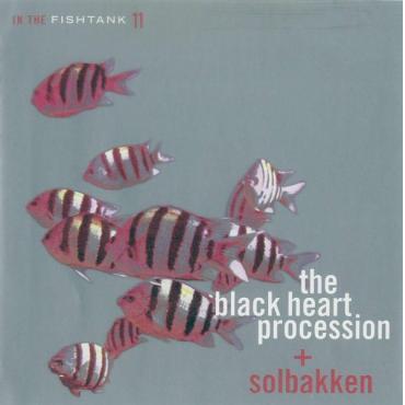 In The Fishtank 11 - The Black Heart Procession