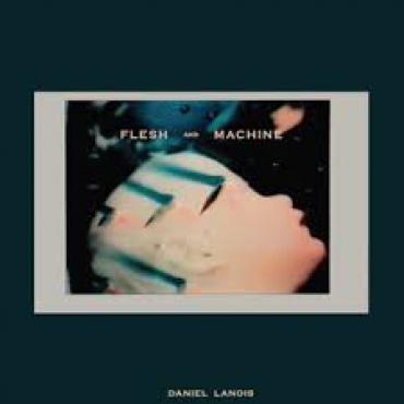Flesh And Machine - Daniel Lanois
