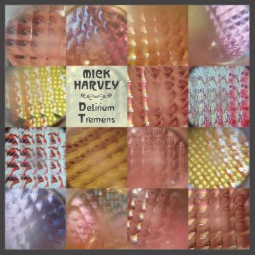 Delirium Tremens - Mick Harvey