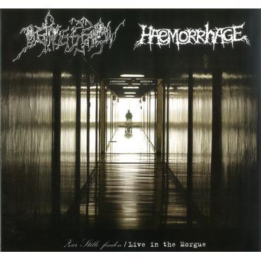 Zur Stille Finden / Live In The Morgue - Depression