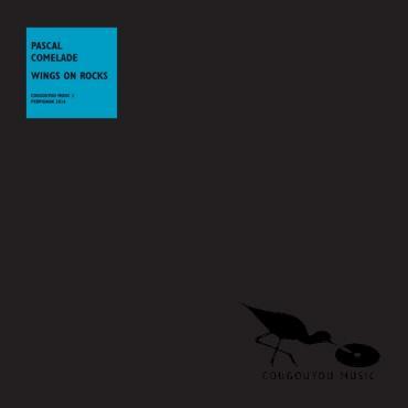 Wings On Rocks - Pascal Comelade