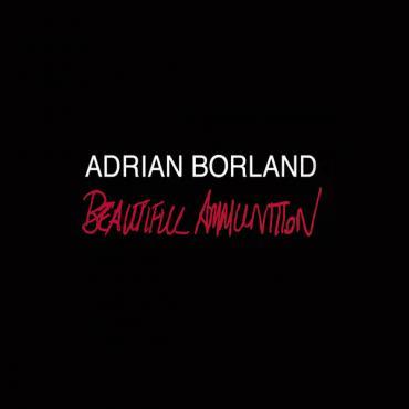 Beautiful Ammunition - Adrian Borland