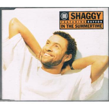 In The Summertime - Shaggy