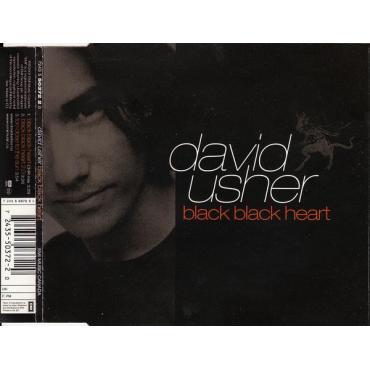Black Black Heart - David Usher