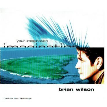 Your Imagination - Brian Wilson
