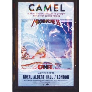 Live At The Royal Albert Hall - Camel