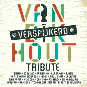 Verspijkerd - Van Dik Hout