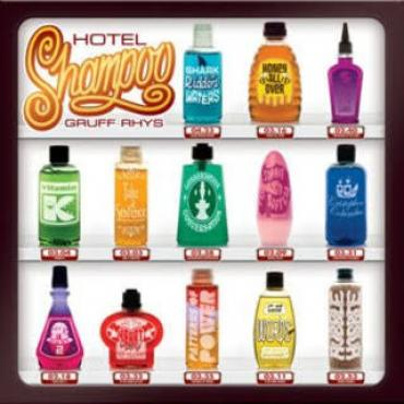 Hotel Shampoo - Gruff Rhys