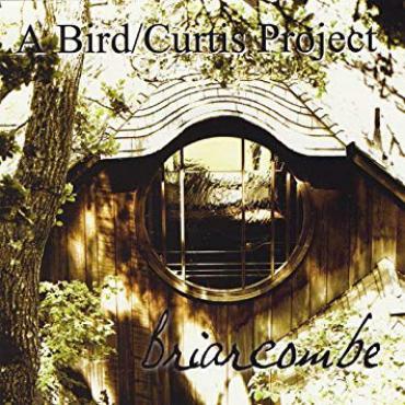 Briarcombe (A Bird / Curtis Project) - Henry Adam Curtis
